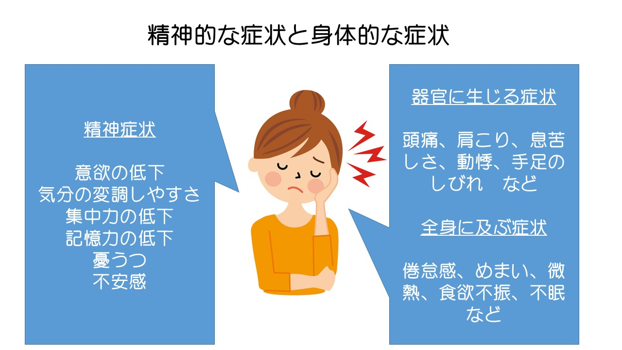 自律神経2.jpg